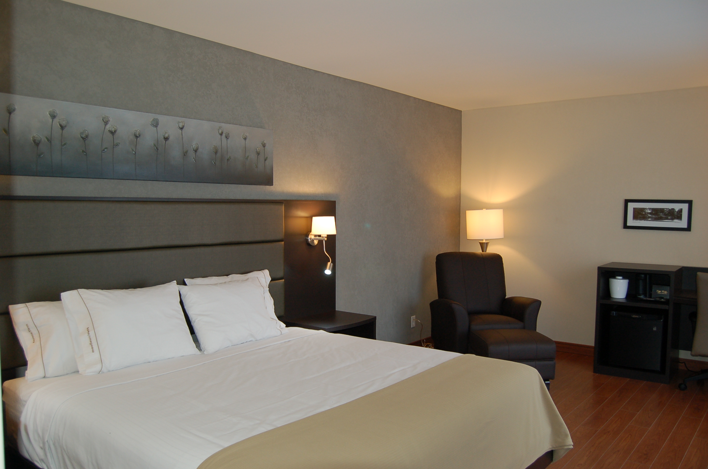 Holiday Inn Express & Suites St-Hyacinthe
